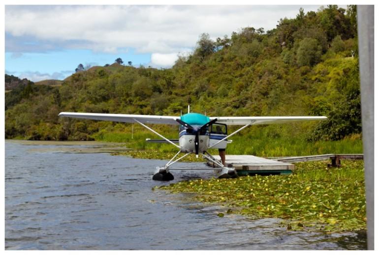 Waitangi Weekend 2016-9691