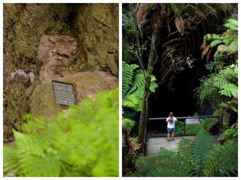 Waitangi Weekend 2016-9766
