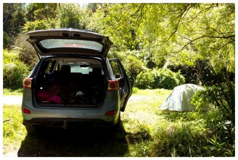 Waitangi Weekend 2016-9937